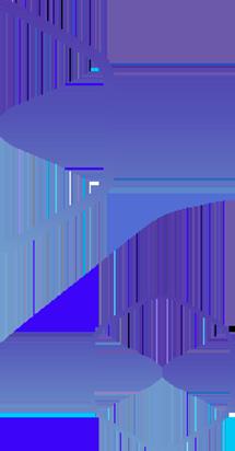 overlay11